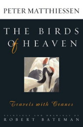 Cover book Birds of Heaven
