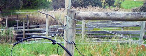 Crane Friendly Fencing 5 Electric Fencing Ozcranes